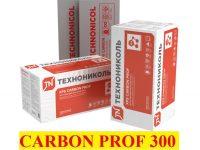CARBON PROF_rael----(1)